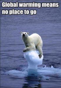 Maybe Al Gore was right.