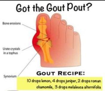 gout4
